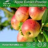 Яблочный уксус извлечения порошок