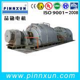 Tk, motor síncrono de gran tamaño de T 3phase (3kv 4kv 6kv 10kv)