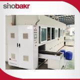 Machine automatique de l'équipement de nettoyage à sec par ultrasons