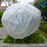 Ecológico de tratamento UV Tampa de Proteção da árvore não tecidos de PP branco