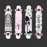 2020 Novo Design de alta qualidade de skate Maple com roda de PU