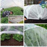 Tampa de tela não tecida da agricultura para a proteção do inverno das plantas de encontro à geada e à perda de água