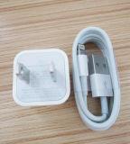 Câble de caractéristiques d'adaptateur d'alimentation de chargeur d'USB pour l'iPad d'iPhone