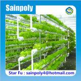 Système agricole agricole complet Serre hydroponique