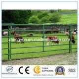 パネルを囲っている金属の畜舎の馬