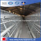 La volaille de production d'oeufs de poulet mettent en cage le matériel