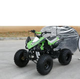 Elektrische Kids 110cc Mini ATV voor Child (MDL ga004-3)