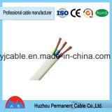 Alambre eléctrico del uso de interior y al aire libre del cable de BV/BVV/Bvr/Rvv/Rvvb/alambre del edificio