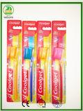 Una maneta transparente más barata con el cepillo de dientes del adulto del casquillo