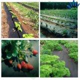 PPのNonwovenファブリック/1-4%農業カバーのための紫外線フィルムのポリプロピレンロールファブリック/Polypropylene Spunbond Nonwovenファブリック