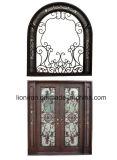 고아한 작풍을%s 가진 호화스러운 아름다운 장식적인 철 등록 문 디자인
