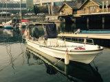 China Aqualand 19feet 23feet 5.8m 7m barco de pesca de fibra de vidrio / Barco de Panga / Barco de motor de placer (230)
