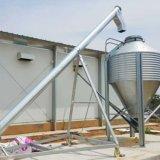 Equipo de la granja avícola con la construcción de la casa en servicio profesional de las personas