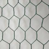 Гальванизированная шестиугольная ячеистая сеть в хорошем качестве