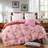 Duvet/trapunta/Comforter materiali del cotone della fibra di poliestere per l'hotel /Home/Hospital