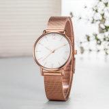 Reloj ocasional de las señoras del cuarzo del ODM de la manera (Wy-17038)