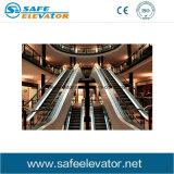 Escada rolante certificada Ce da boa qualidade