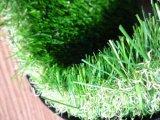 [غرت فلو] اصطناعيّة عشب حديقة سياج لأنّ حديقة