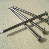 中国は広州の製造者の鉄ワイヤー釘を磨いた