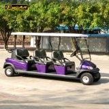 紫色カラー48Vトロイ電池の電気ゴルフカート