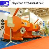 2018년 SGS 철사는 구체적인 절단 Tsy11g/15g를 위해 기계를 보았다
