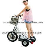 500W&Nbsp;barato&Nbsp;&Nbsp;3&Nbsp;ruedas para Adultos&Nbsp;&Nbsp;Discapacitados&Nbsp;Scooter eléctrica&Nbsp;Trike,&Nbsp;&Nbsp;&Nbsp;triciclo de pedal eléctrico