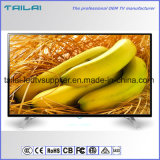 """OEM 48 """"Steun van de Muur WiFi van TV van FHD 2K H. 264 Digitale leiden isdb-t de Slimme"""