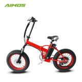 20*500W de 4,0 pulgadas de nieve en la Playa de los neumáticos de la Grasa Dirt Bike Bicicleta eléctrica