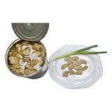No hay buena calidad de plaguicidas Champignons mejor venta de setas en conserva