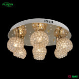 A lâmpada de cristal a mais nova do teto com diodo emissor de luz (C-9460/6A)