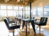 의자를 유행에 따라 디자인 해 목제 팔걸이 다이아몬드 바느질 이발사와 가진 의자를 유행에 따라 디자인 하기