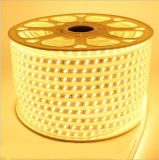 옥외 나무 점화를 위한 온난한 백색 Dd 5730 LED 밧줄 빛