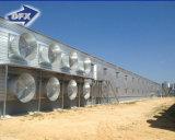 De Structuur van het staal wierp het Goedkope Huis van het Gevogelte van de Bouw van het Landbouwbedrijf van de Kip van het Metaal af