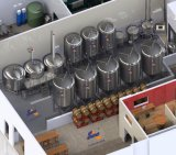 Equipo de la cerveza de la fabricación de la cerveza del equipo de la cerveza del módulo de producción de la cerveza