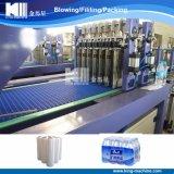 La meilleure machine de vente de rétrécissement de la chaleur de prix bas de produits pour la bouteille d'animal familier