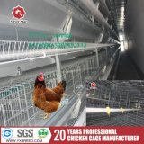 Автоматическая клетка цыпленка ячеистой сети для слоев
