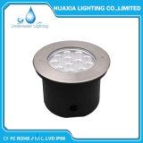 Lumière sous-marine de l'acier inoxydable IP68 DEL de C.C 12V 24V 36W 316