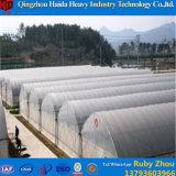 China-Fabrik-Preis-Plastikfilm-Gewächshaus mit Wasserkultursystem