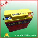 Koyama Mpp240-12 12V 20ah mobile u. bewegliche Stromversorgungen-Batterie