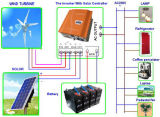 Controlador & inversor todos em um para o vento e o sistema solar