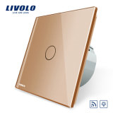 Livolo HAVE Standard Remote&Dimmer Wall Light Touch Switch Vl-C701dr-13