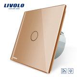 Livolo remota estándar de la UE y el atenuador de luz de pared interruptor táctil Vl-C701DR-13