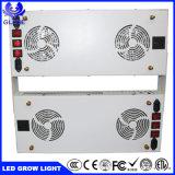 完全なスペクトル2000W LEDのプラントは3590 3500K LEDがライトを育てる軽い穂軸のクリー族Cxbを育てる