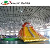 Neuer fantastischer aufblasbarer Wasser-Park-multi Sport-Arena