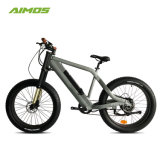 La plupart Welecomed Snow vélo électrique pour l'homme