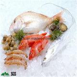 Cámara fría para la carne fresca y los pescados