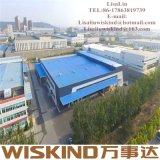 Costruzione della struttura d'acciaio della pianta industriale per la Camera prefabbricata del magazzino