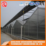 Agriculture를 위한 중국 Quality Assurance 다중 Span PC Sheet Greenhouse