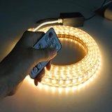 安いLEDの滑走路端燈の暖かい白SMD5630 LEDの滑走路端燈装飾的で軽いロープ220V