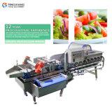 Automatique de type Vortex Légumes Chou Laitue Lavage machine de traitement avec la version simple de grande capacité